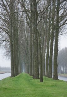West Flanders alley, Belgium